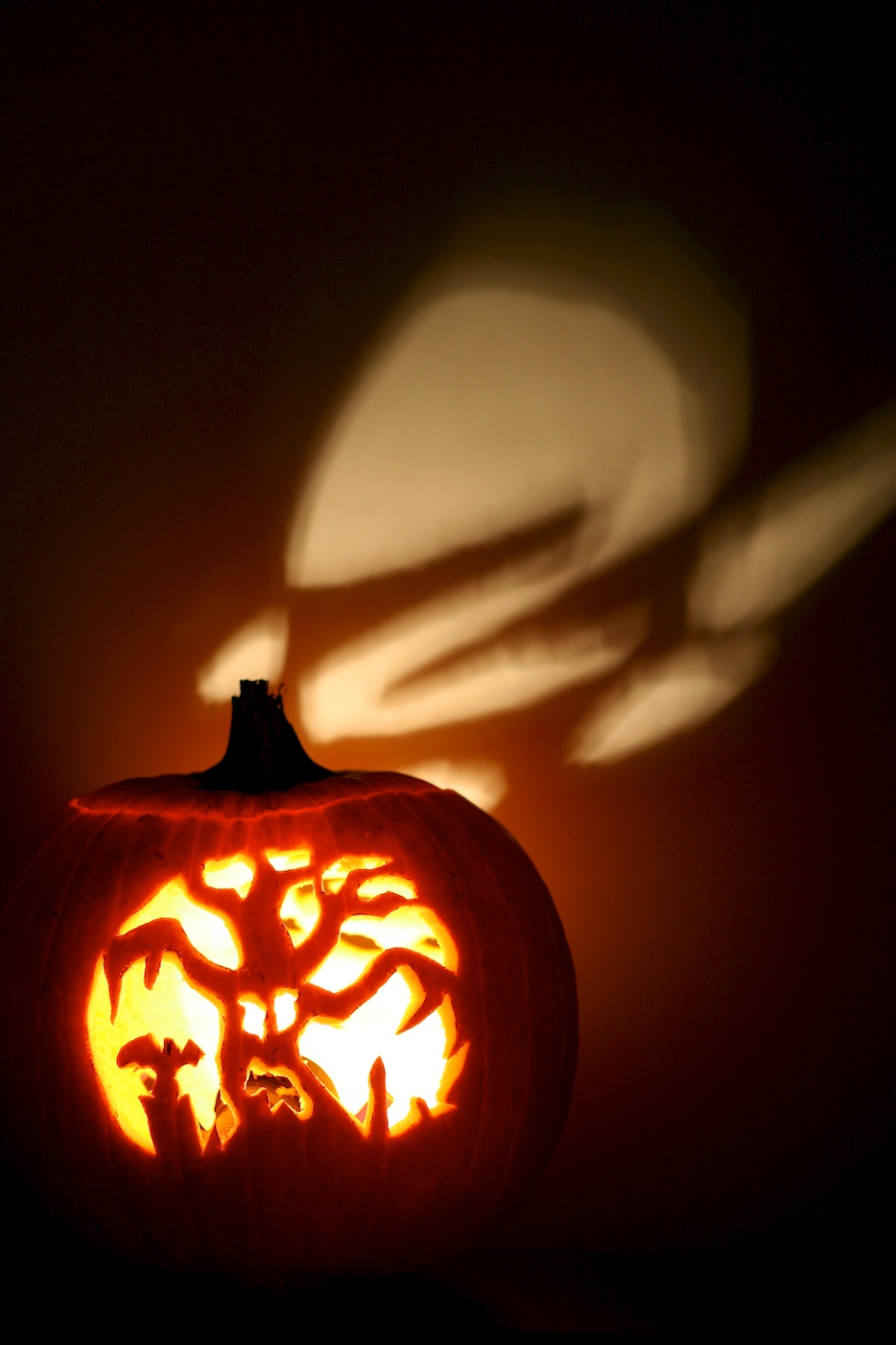 Pumpkin Carve Off 2011 Group 1 Movita Beaucoup