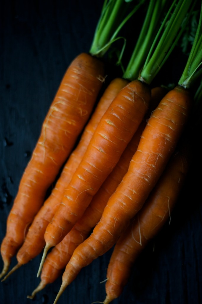 nova scotia hodge podge | movita beaucoup | carrots