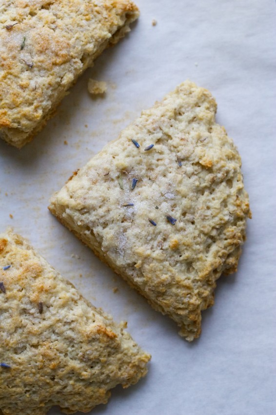 oatmeal scones topped with lavender sugar | movita beaucoup