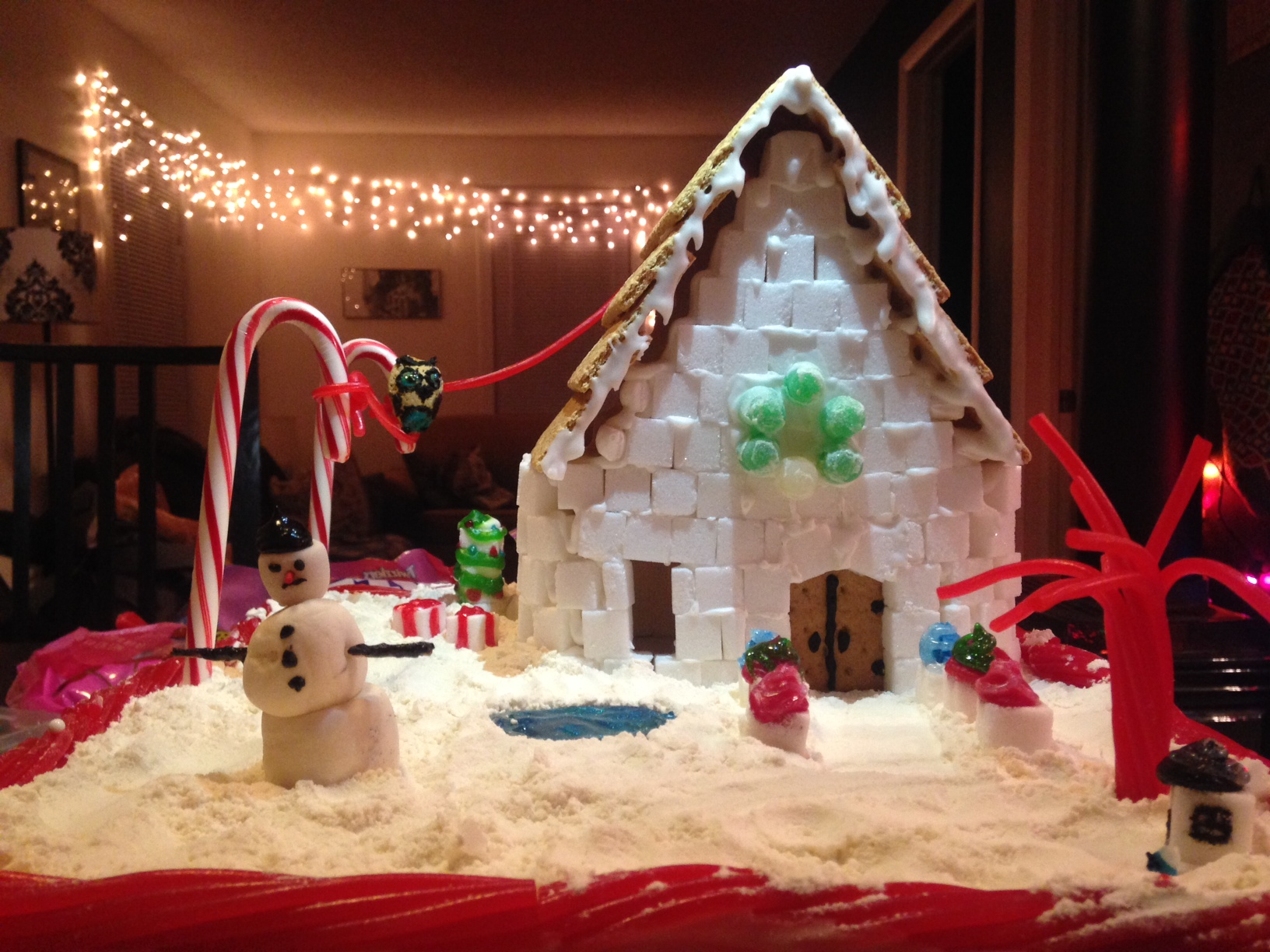 Cassie & Dan's Ice House